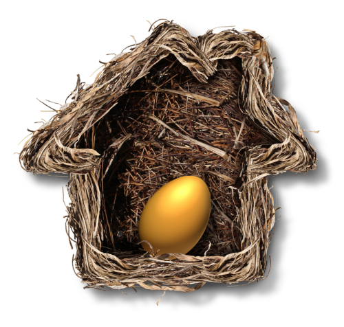 Accessing home equity with a reverse mortgage